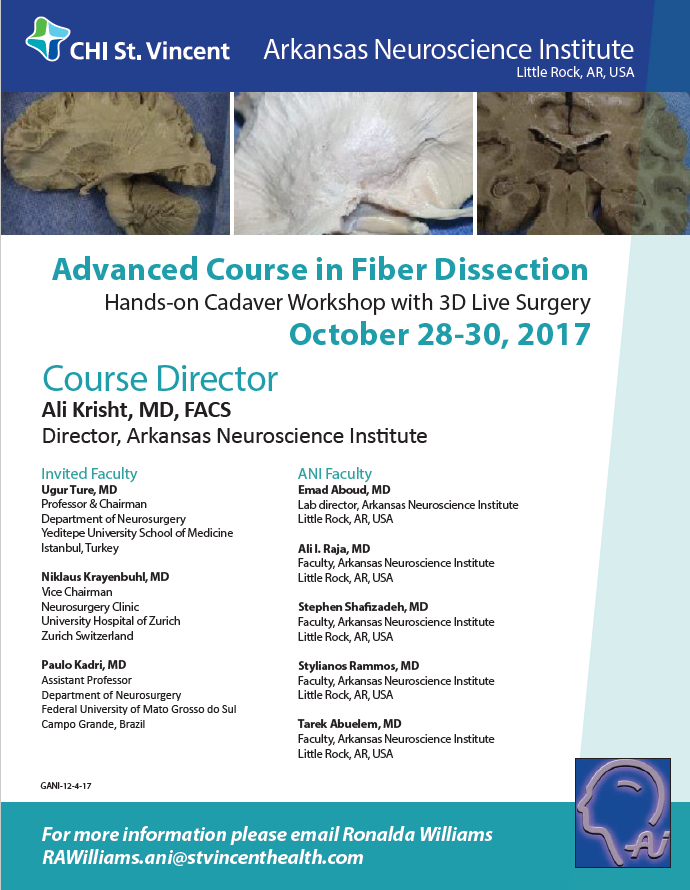 Fiber Dissection